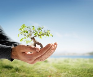 istock_personal_growth